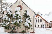 pophyr_im_Winter_29